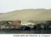 candelabro-de-paracas