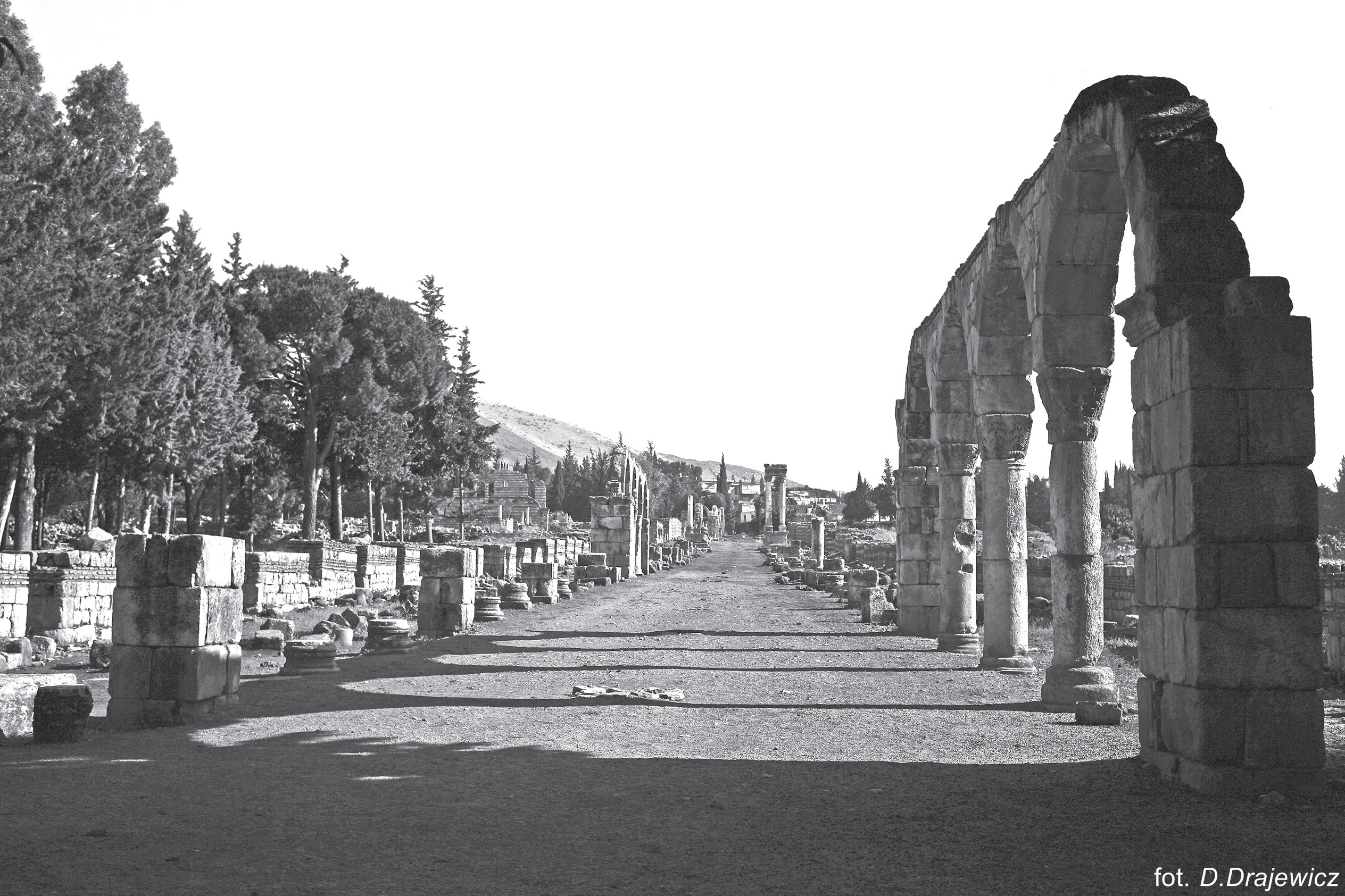 Liban 2014